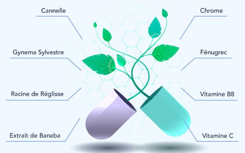 Les ingrédients qui composent Glucauxi-85